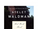 Red Hook Road by Ayelet Waldman Waldman (Love and Other Impossible Pursuits) follows the aftermath of two families after a young couple dies in a car crash an hour after their wedding.  Why it's a great summer read: Because it's the summer! Wedding season! And car crash season! And long ruminations about the way death initially unites us but also infuses all of our interactions with sublimated, unending residual pain until we finally come to an understanding of ourselves and each other season!