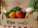 Visit the Ripe MarketThe RIPE Market is back with their weekly events at Umm Al Emarat Park. The free event takes place from 3pm to 9pm, and it's a great place to wind down the weekend before the working week starts again. Offering up fresh fruits and vegetables as well as a number of local vendors selling unique and handmade items, the popular market will be on hand to offer some retail therapy. Plus, with live music, entertainment and food trucks, you can also get a bite to eat and entertain the kids while out and about in the city.Free (Dhs10 entry to the park). Sat 3pm-9pm. Umm Al Emarat Park, Al Mushrif, www.ripeme.com