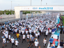Join WALK 2019WALK 2019 is returning to Yas Island on November 15 for its thirteenth edition. Aiming to encourage everyone to lead a more active lifestyle, people of all ages and abilities are invited to take part in the 5km walk around Yas Marina Circuit. Hosted by the Imperial College London Diabetes Centre in honour of World Diabetes Day, more than 20,000 people are expected to join in and take a stroll around the world-famous track. The day also includes other fun fitness-related activities such as Zuma, Pilates and yoga, plus the chance for families to have a go on a climbing wall, trampolines and a range of giant inflatables. You can pick up some healthy eating tips from the cooking demonstrations, grab a bite from one of the food trucks and there will even be a magician on hand to entertain the kids.Dhs10. Nov 15, from 2pm. Yas Marina Circuit, Yas Island, www.walkon.ae.