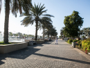 A wander round Formal ParkIf you have a four-legged friend you could head to Formal Park for walkies. It's open 24 hours and has a running track if you want to speed things up a bit.24 hours, Sultan Bin Zayed the First Street (no number).