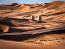 Desert camping in Abu Dhabi: where to go and how to get there