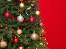 Christmas in Abu Dhabi 2020: Where to buy your Christmas tree