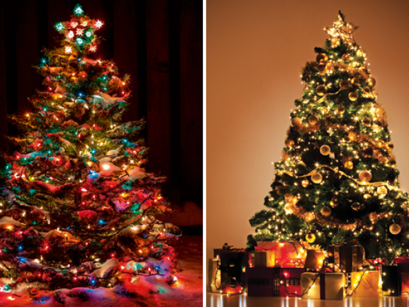 Where to buy a Christmas tree in Abu Dhabi 2014