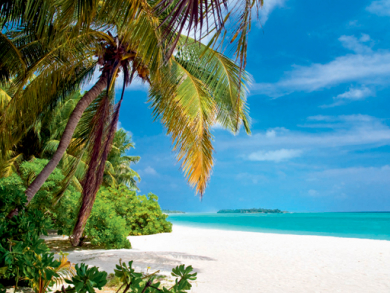 Time Out Seychelles guide