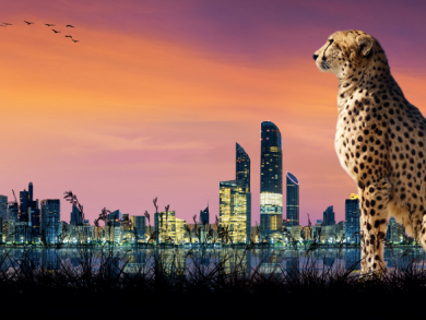 Animal attractions in the UAE