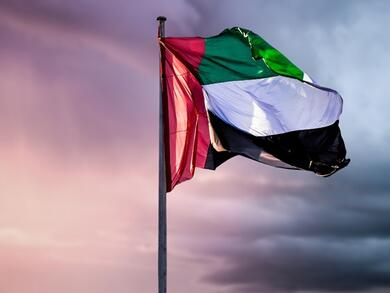 When is the UAE's next public holiday in 2018?