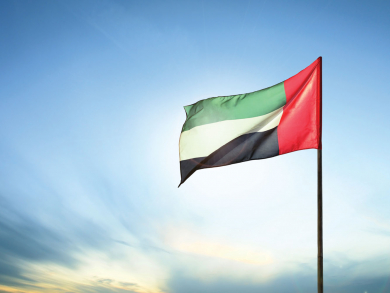 UAE ranked top among GCC states in UN Human Development Report