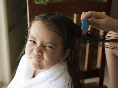 How to prevent and combat head lice in the UAE