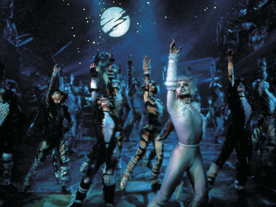 Watch Cats for free online in the UAE