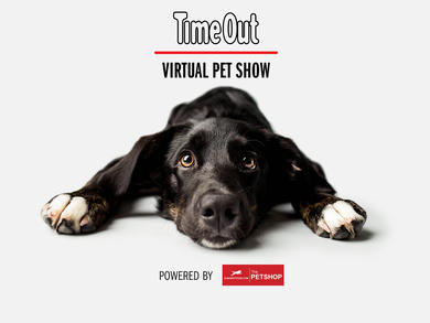 Enter the Time Out UAE Virtual Pet Show